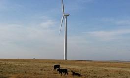 wind-worker-fatality-in-us - reNews - Renewable Energy News