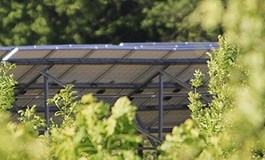 Cubico grabs UK solar