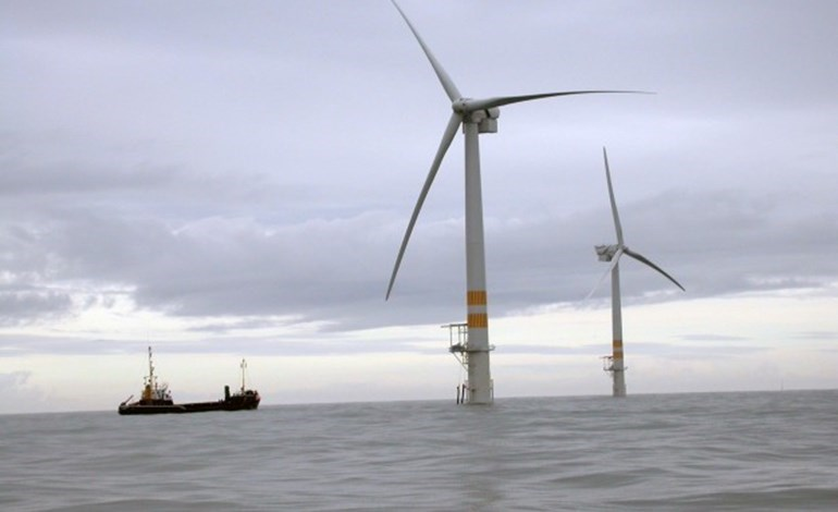 Irish offshore investment 'at risk'