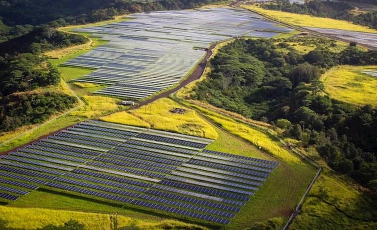 Hawaiian Electric holds 900MW renewables bid round ...