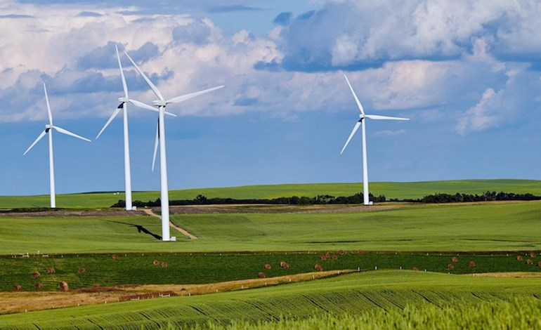 Major study finds no link between turbine 'noise' and harm